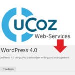 Перенос сайта с Ucoz на Wordpress